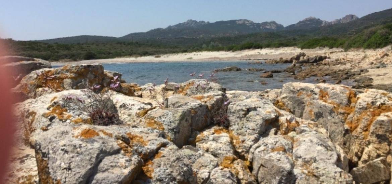 Sardegna Naturista
